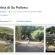 Gatti Su Pallosu: prima attrazione turistica oristanese