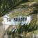 Multa di 500 euro per un gatto abbandonato a Su Pallosu