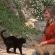 1 milione e mezzo di persone in tv per i Gatti di Su Pallosu